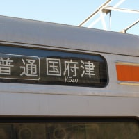 313系御殿場線(谷峨駅)