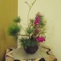 ユキヤナギとストックの瓶花