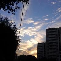夏からの約束「横須賀美術館行き」を実行。お天気も良く満喫しました。