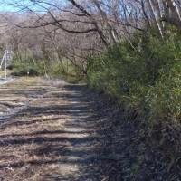 デジブック 『早春散歩』