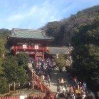 鎌倉の鶴岡八幡宮へお参り