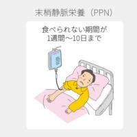 小林麻央「我が家は最高の場所」退院報告、在宅で乳がん治療継続