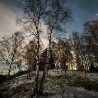 懐かしき心のありかと思ふたびみんな冬の星座を見てゐる