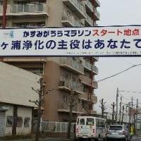 haru記vol.20