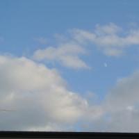 青い空に月が浮かんでた