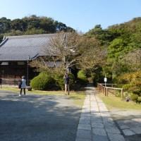 来年のカレンダー  & 昭和記念公園の紅葉 そのほか