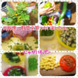 今週のお料理です(*^-^*)