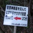 Ⅱ峰奥壁人形岩ルート、【ソーン・バード】公開