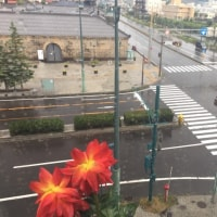 北海道8日目