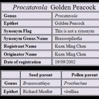 プロカタボラ