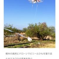 ドローン活用、食の生産・漁獲現場で飛躍 魚群探査や作柄分析
