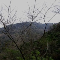 湯の町暮らしに 自然豊かに深山の雰囲気を醸し出す里山を彷徨いて