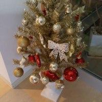 クリスマス間近♪