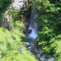 ●初夏の白山白川郷ホワイトロード 新緑の蛇谷園地と姥ヶ滝  白山