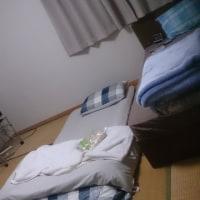ここで寝るです