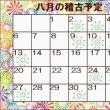 夏を楽しむ ~八月の稽古予定~