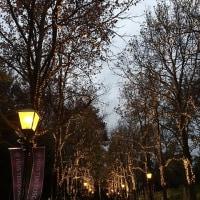 「ハウステンボス+有田」3人旅・・・「ハウステンボス」・・・二日目・・・夜は「美術館」でレンブラントとイルミネーションショー(^^)