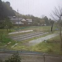 あ~あ、😞雨雨、また雨