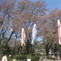 桐生が岡公園(14)