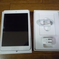 iPad mini2 128GB ��ä��㤤�ޤ�����