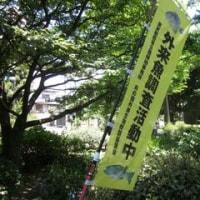 井の頭恩賜公園_東京都武蔵野市