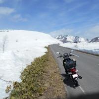 志賀高原雪の回廊見にぶらぶら