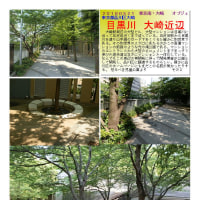 散策 「東京中心部南 253」 目黒川 大崎近辺