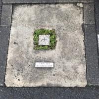 市役所(四等三角点)