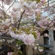 熊本地震一周忌追悼法要、復興祈願法要