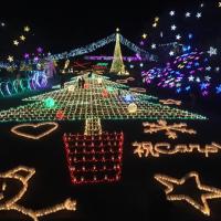 2016 花と光のページェント(広島市植物公園)