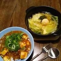 寒い日には熱々麻婆豆腐ごはん