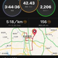 名古屋ウィメンズマラソン2017→イカナゴの釘煮