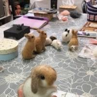 4月の羊毛教室☆日曜日クラス