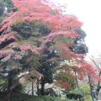 上野公園散策