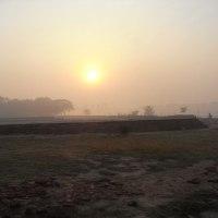 オレンジ色に染まる朝霧の中で/早朝のタージ・マハル