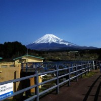 富士山こどもの国に宿泊