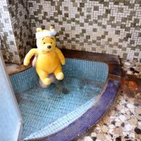 プーさん 長野県松本市奈川 奈川温泉 富喜の湯に行ったんだよおおう その9