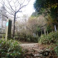 2016.12.4 伏見道 マツバカケ尾