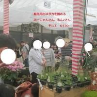 第五回国華園デート~その時奇跡が起きた!~
