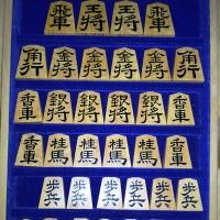 将棋の駒の魅力 ー1ー 『将棋の駒は、一度始めたらやめられない』