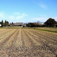 刈り終わる圃場の村が静かです