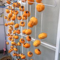 恒例の愉しみ〜干し柿作り