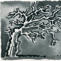 木枯らしが落ち葉持ち去り犬がなく