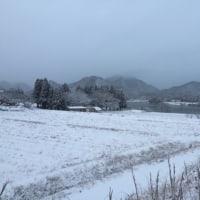 今日の青野ダム  初雪!