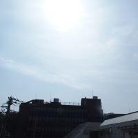 東京の今朝の天気(6月20日):晴れ