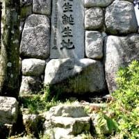 びわ湖勝手気まま歩き 22周-番外編・膳所~唐橋ー南郷洗堰往復!