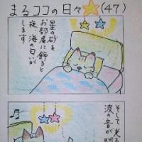 まるココの日々(47)