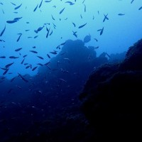 脱出の日の海は