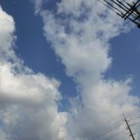 晴れ間しっかり雲しっかり