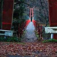 ダム湖の朝 気嵐・飛び立つ・登山口